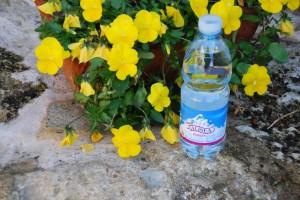 Gesegnetes Osterwasser - Toscana