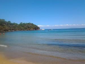 Ferien an Traubucht Elba