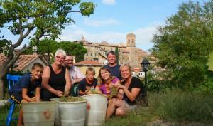 Weinernte Toskana im Ferienhaus Il Nidino