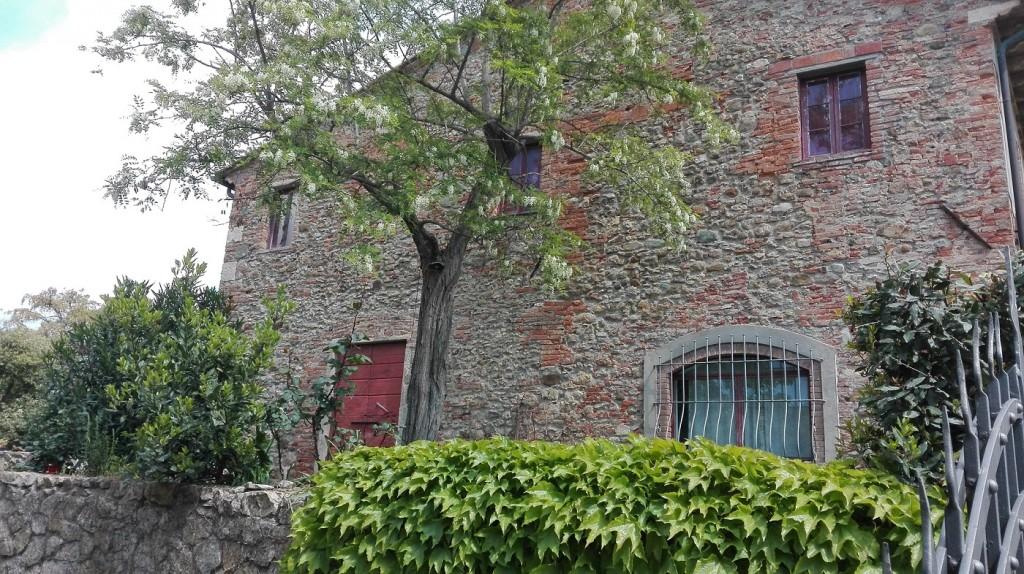 Rustico mit Weinkeller, schöner Sicht, Olivenhain und Land zu weniger als 800 Euro/ qm