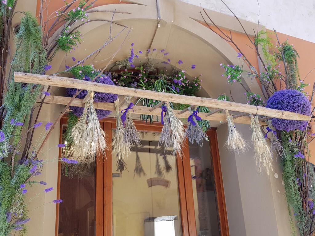 Neuer Laden in Lari, ein Kleinod! Lo Spigo